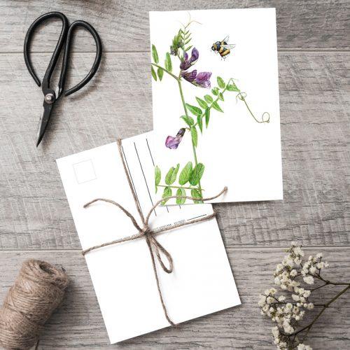 Postkarte Sweet Pea & Bumblebee