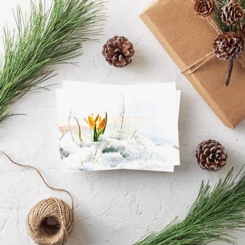 Postkarte Weihnachten Krokus Wintergrüße