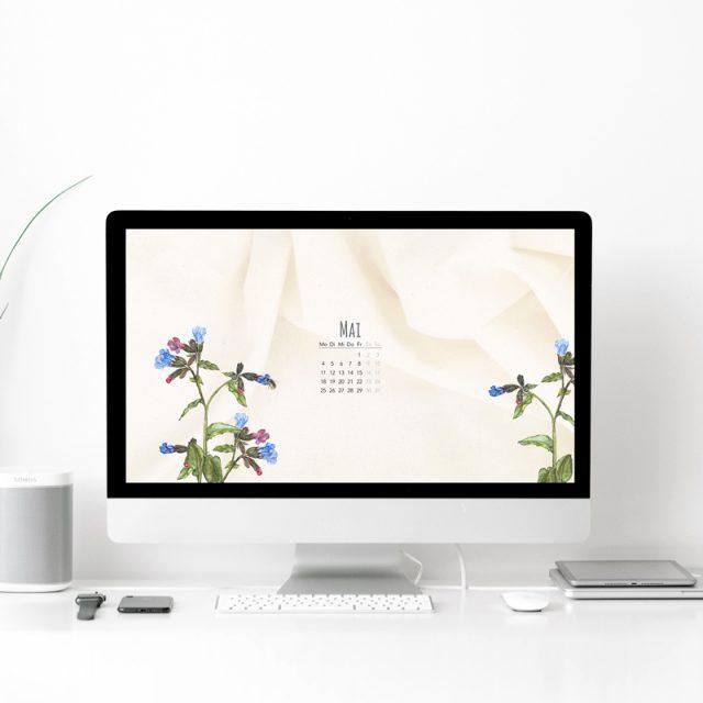 Wallpaper Desktop Mai