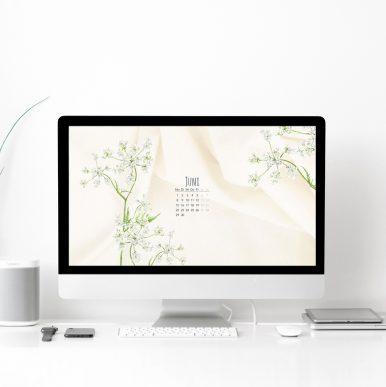 Wallpaper Desktop Juni